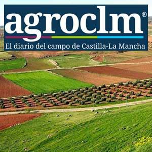 Queso Manchego Las Terceras en el diario del campo de Castilla La Mancha