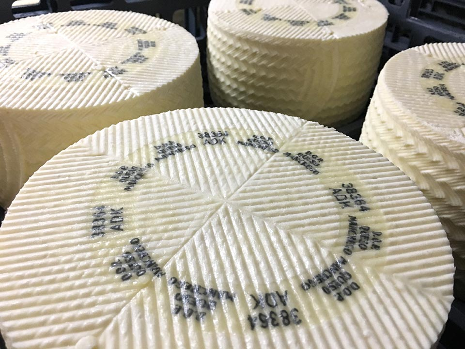 Las Terceras incorporates the new casein to its Manchego cheeses PDO