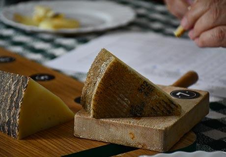 Maridaje con vino tinto de queso manchego