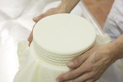 Queso alimento derivado de la leche de oveja resulta muy nutritivo